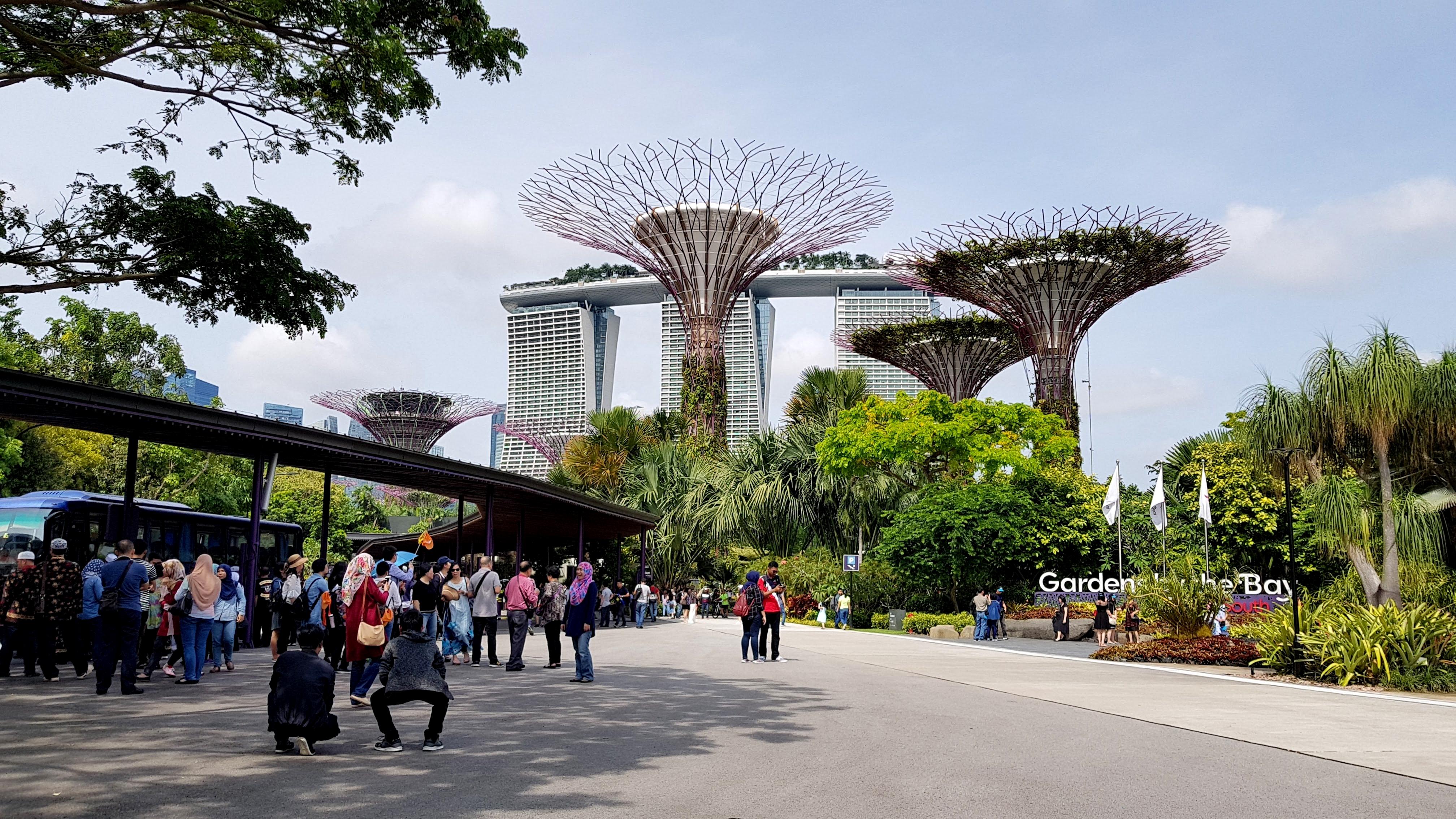 Singapuras kolumbokeliones asmeninis archyvas 3